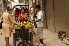 Fruits shopping in Habana Vieja Photograph: Georgia Korossi/11polaroids