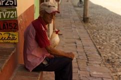 New York rooster Photograph: Georgia Korossi/11polaroids