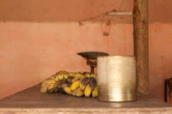 Trinidad: grocery through the shutters Photograph: Georgia Korossi/11polaroids
