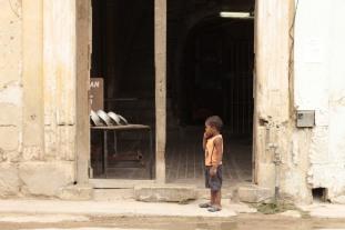 Boy watches lizard Photograph: Georgia Korossi/11polaroids