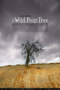 The Wild Pear Tree (2018) poster